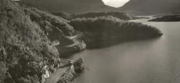 Norge Valdes